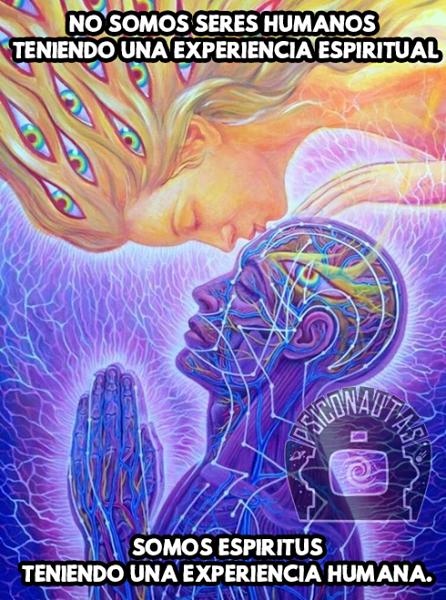 Somos espíritus teniendo una experiencia humana