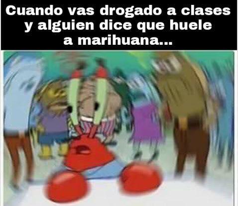 Cuando vas a clases