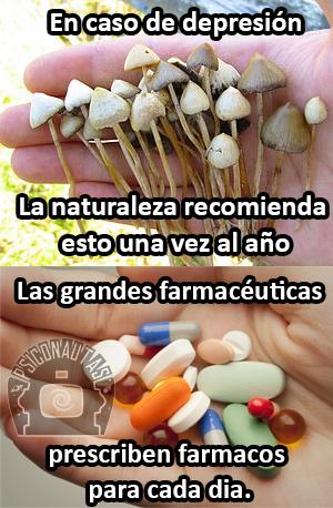 Naturaleza vs farmacia