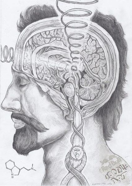 Imagen de Doddle Art