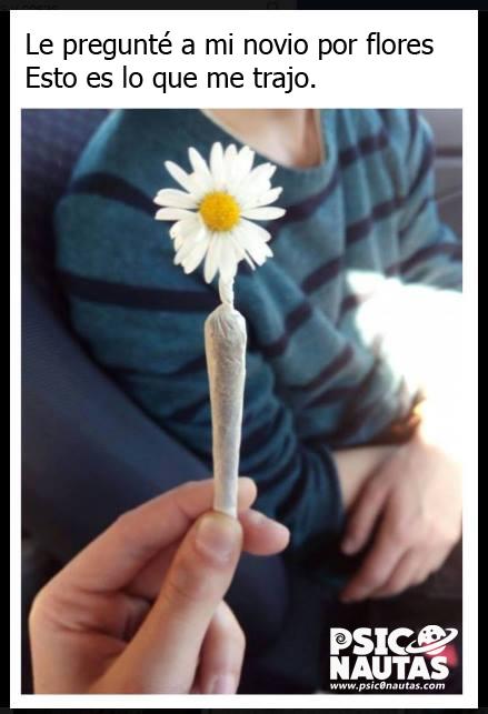 pregunte por flores