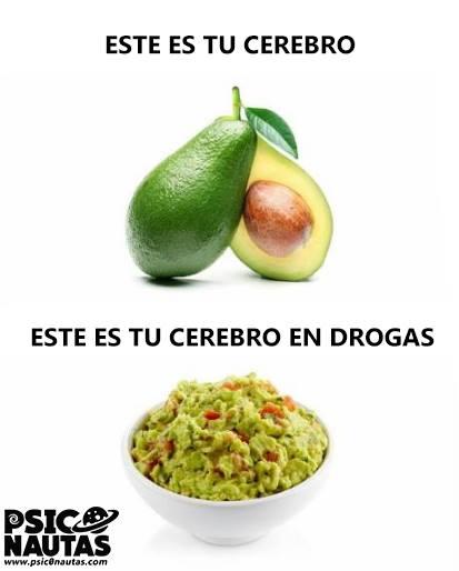 Tu cerebro en drogas