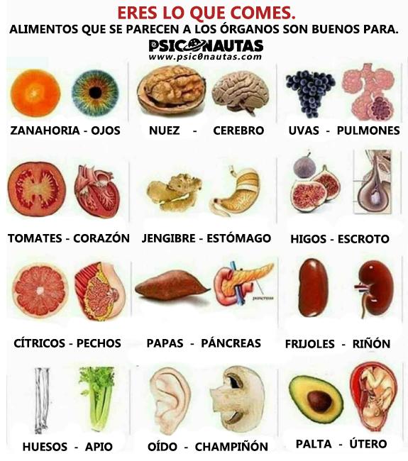Eres lo que comes.