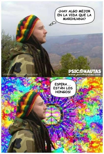¿Hay algo mejor en la vida que la marihuana?