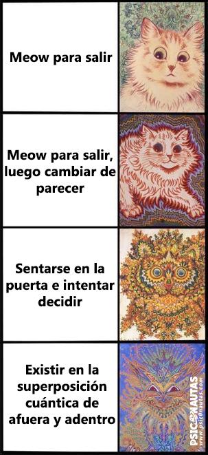 Meow para salir
