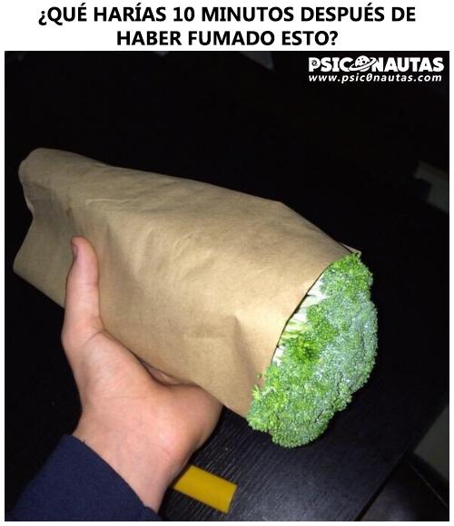 ¿Qué harías 10 minutos después de haber fumado esto?