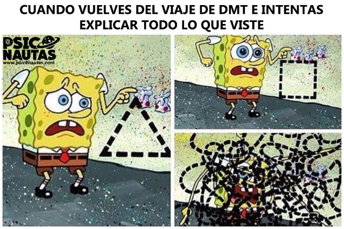 dmt-asd