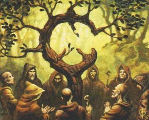 Las 9 leyes Celtas