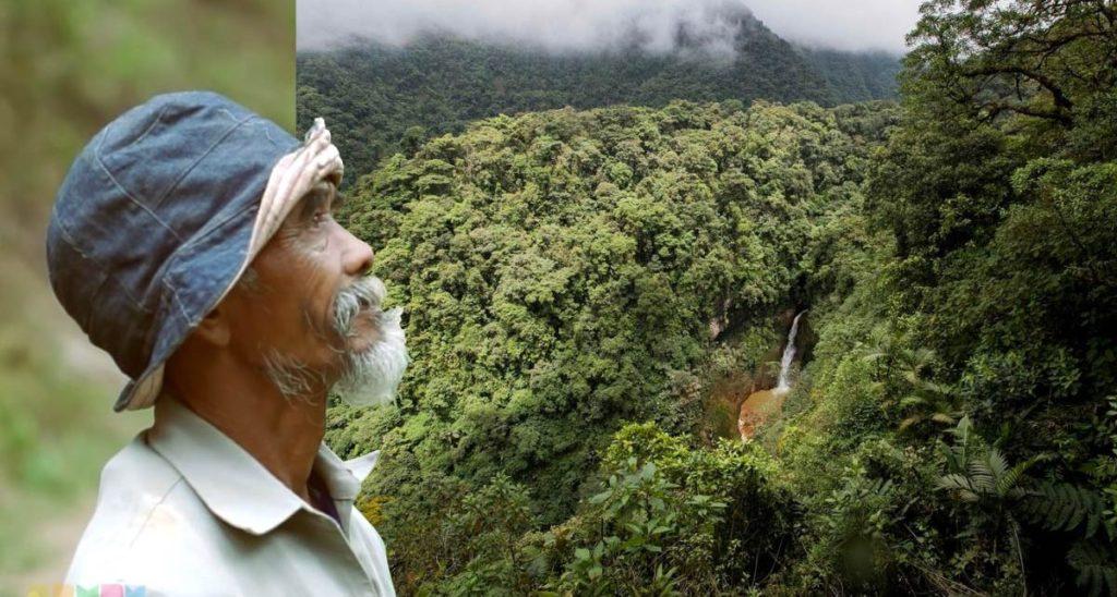 Hombre lleva 24 años plantando árboles para salvar a la aldea de la sequía